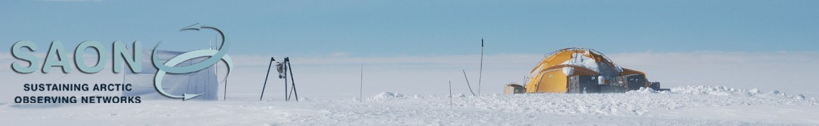 Sustaining Arctic Observation Networks